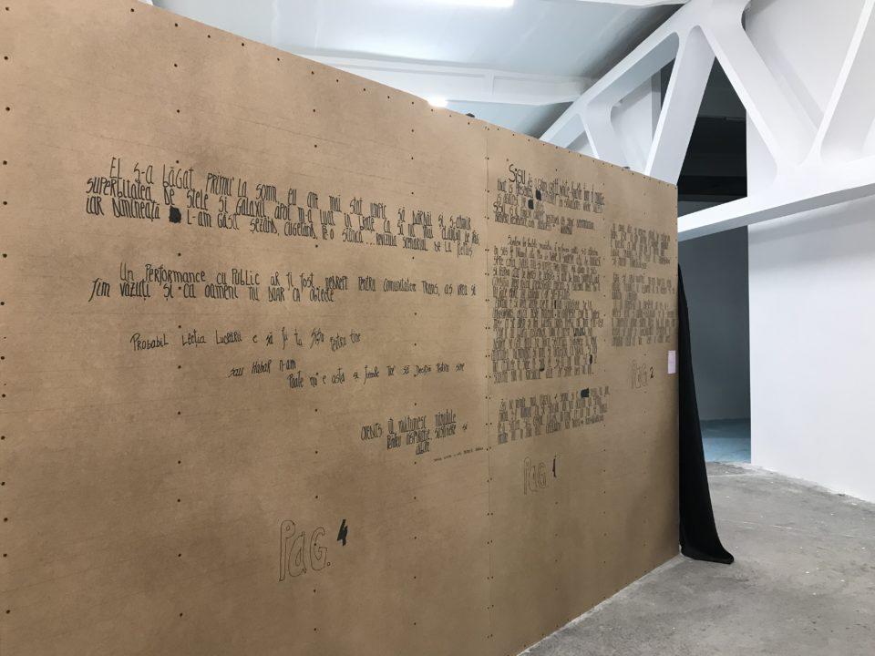 Kunsthalle Bega și un șantier